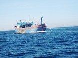 Chính trị - Xã hội - Thả mẻ lưới cuối cùng để vào bờ tránh Bão số 10, một ngư dân tử nạn