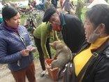 Xã hội - Độc đáo phiên chợ chó truyền thống ở miền quê xứ Nghệ