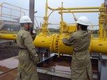 """Tài chính - Ngân hàng - PV GAS nộp thiếu 82 tỷ thuế vì """"nghiệp vụ chưa đúng"""""""