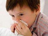 Các bệnh - Cảnh giác với bệnh cúm động lực cao lây truyền qua gia cầm