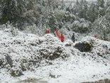 Tin nhanh - Dự báo thời tiết 29/1: Bắc Bộ rét đậm, vùng núi cao dưới 5°C