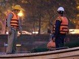 Xã hội - Quây lưới, mắc đèn pha bảo vệ thiên nga ở hồ Thiền Quang