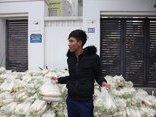 Môi trường - Dân Hà Nội tấp nập mua củ cải 'giải cứu' nông dân Mê Linh