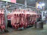 Chính trị - Xã hội - UBND TP.HCM: Không để thịt heo bẩn nhập chợ đầu mối từ 16/10