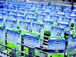 Đầu tư - 'Đại gia' kín tiếng chi thêm 400 triệu USD mua cổ phiếu Vinamilk