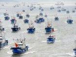 Tiêu điểm - Từ châu Phi đến Nam Mỹ, tàu Trung Quốc đánh bắt cá của cả thế giới