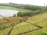 Điểm nóng - Gần 50 hồ chứa đang đe dọa vùng hạ du