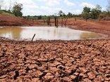 Điểm nóng - Sơn La: Gần 780.000ha đất bị thoái hóa