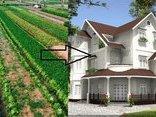 Kết nối- Chính sách - Muốn xây nhà trên đất nông nghiệp cần phải làm thủ tục gì?