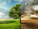 Kết nối- Chính sách - Biến đổi khí hậu – Nhìn lại năm 2017