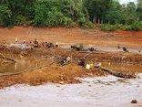 Kết nối- Chính sách - Tây Nguyên: Quản lý bền vững nguồn nước ứng phó hạn hán