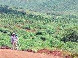 Kết nối- Chính sách - Thực hiện thủ tục hành chính đất đai: Nhiều địa phương vi phạm