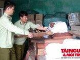 Điểm nóng - Xe tải chở hơn 1,7 tấn gỗ quý không rõ nguồn gốc bị bắt giữ tại Quảng Nam