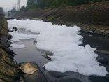 Điểm nóng - Đà Nẵng: Dân thấp thỏm vì bọt trắng dài hàng km xuất hiện trên sông Phú Lộc