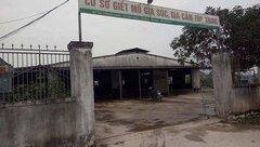 Xã hội - Hà Tĩnh: Bày bán thịt lợn nghi bị bệnh có dấu kiểm dịch của cơ sở giết mổ