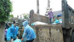 Tin nhanh - Hà Tĩnh: Tiêu hủy hơn 362 tấn sứa tồn từ sự cố môi trường
