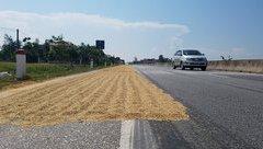 Tin nhanh - Hà Tĩnh: Nghiêm cấm người dân phơi lúa trên quốc lộ