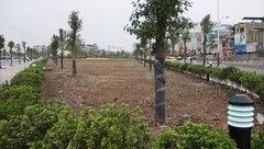 An ninh - Hình sự - Hải Phòng: Điều tra dự án công viên có dấu hiệu sai phạm gần 51 tỷ đồng