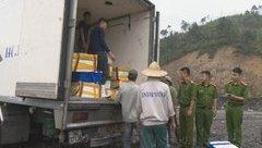 Tin nhanh - Quảng Ninh: Hơn 3,5 tấn cá không có hoá đơn chứng từ bị tiêu hủy