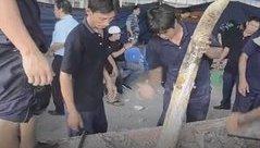 Tiêu dùng & Dư luận - Lật tẩy thủ đoạn của các công ty buôn lậu ngà voi