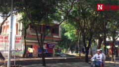 Bất động sản - Saigontourist bỏ hoang, gây lãng phí, quản lý và sử dụng đất công sai quy định