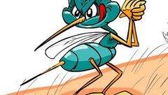 Cộng đồng mạng - Trưa cười: Muỗi cũng phải sợ