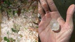 Mới- nóng - Clip: Cận cảnh trận mưa đá kinh hoàng xuất hiện ở Mộc Châu