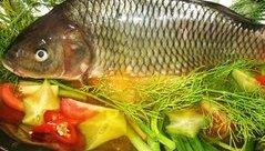Đời sống - Món ngon mỗi ngày:  Cá chép om dưa ngon tuyệt đãi cả nhà