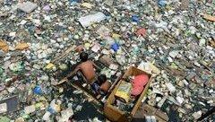 Cuộc sống số - Các nhà khoa học tìm ra cách tiêu hủy nhựa chỉ trong vài ngày