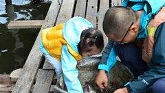 Đời sống - Lý do bất ngờ của ông bố đưa con gái 2 tuổi đi vòng quanh Đông Nam Á