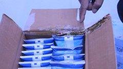 Tiêu dùng & Dư luận - Đắk Lắk: Phát hiện giòi trong thùng sữa TH True Milk