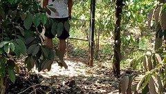 Tin nhanh - Đắk Nông: Phát hiện người đàn ông chết trong tư thế treo cổ