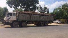An ninh - Hình sự - Đắk Lắk: Bộ Công an bắt vụ phá rừng lớn tại vườn Quốc gia Yok Đôn