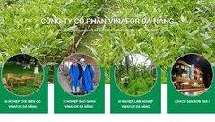 Tiêu dùng & Dư luận - Vinafor Đà Nẵng bị phạt hàng chục triệu