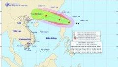 Chính trị - Xã hội - Tin thời tiết mới nhất: Bão Hato giật cấp 10 tiến vào Biển Đông