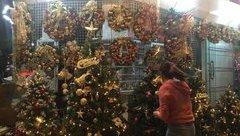 Tiêu dùng & Dư luận - Cận kề Giáng sinh, cây thông Noel loạn giá