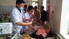 Tin nhanh - Nghệ An: Thêm một người bị ngộ độc do uống rượu ngâm rễ cây