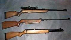 An ninh - Hình sự - Xử phạt các đối tượng chế tạo và buôn bán linh kiện làm súng săn