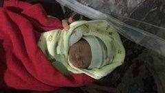 Xã hội - Bé gái sơ sinh bị bỏ rơi trước cổng chùa cùng lá thư mong được giúp đỡ