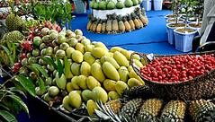 Văn hoá - Gần 1.000 tấn trái cây sẽ được trưng bày tại lễ hội trái cây Nam Bộ 2018