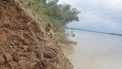 Điểm nóng - Nguy cơ mất đất, mất làng do sông Thu Bồn bị sạt lở