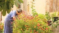 Gia đình - Vườn hoa nhỏ đong đầy ý nghĩa