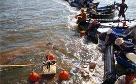 Chính trị - Xã hội - Quảng Ninh: Bục đường ống truyền tải, 200 lít dầu tràn xuống biển