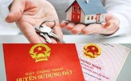 Môi trường - TP.HCM: Cấp giấy chứng nhận cho những trường hợp mua bán trao tay