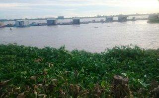 Pháp luật - Ngư dân phát hiện thi thể nam giới trôi trên sông Cổ Chiên