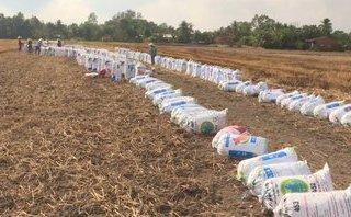 Tin nhanh - Vĩnh Long: Nông dân ồ ạt bán đất mặt ruộng