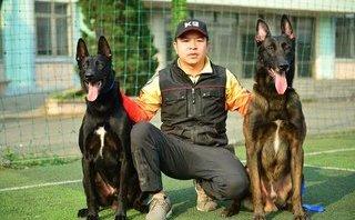 Xã hội - 8X Hà Tĩnh chi hàng trăm triệu lập gia phả online cho chó