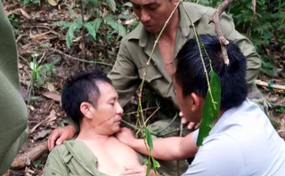 Tin nhanh - Hoàn cảnh bi đát của 'người gác rừng' bị cây gỗ đè trúng trong lúc tuần tra