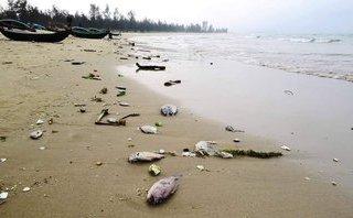 An ninh - Hình sự - Hà Tĩnh: Khởi tố 2 cán bộ thôn nhận tiền làm hồ sơ hưởng đền bù sự cố môi trường biển