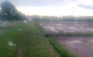 Chính trị - Xã hội - Bất ngờ mưa giông, nông dân bị sét đánh giữa đồng